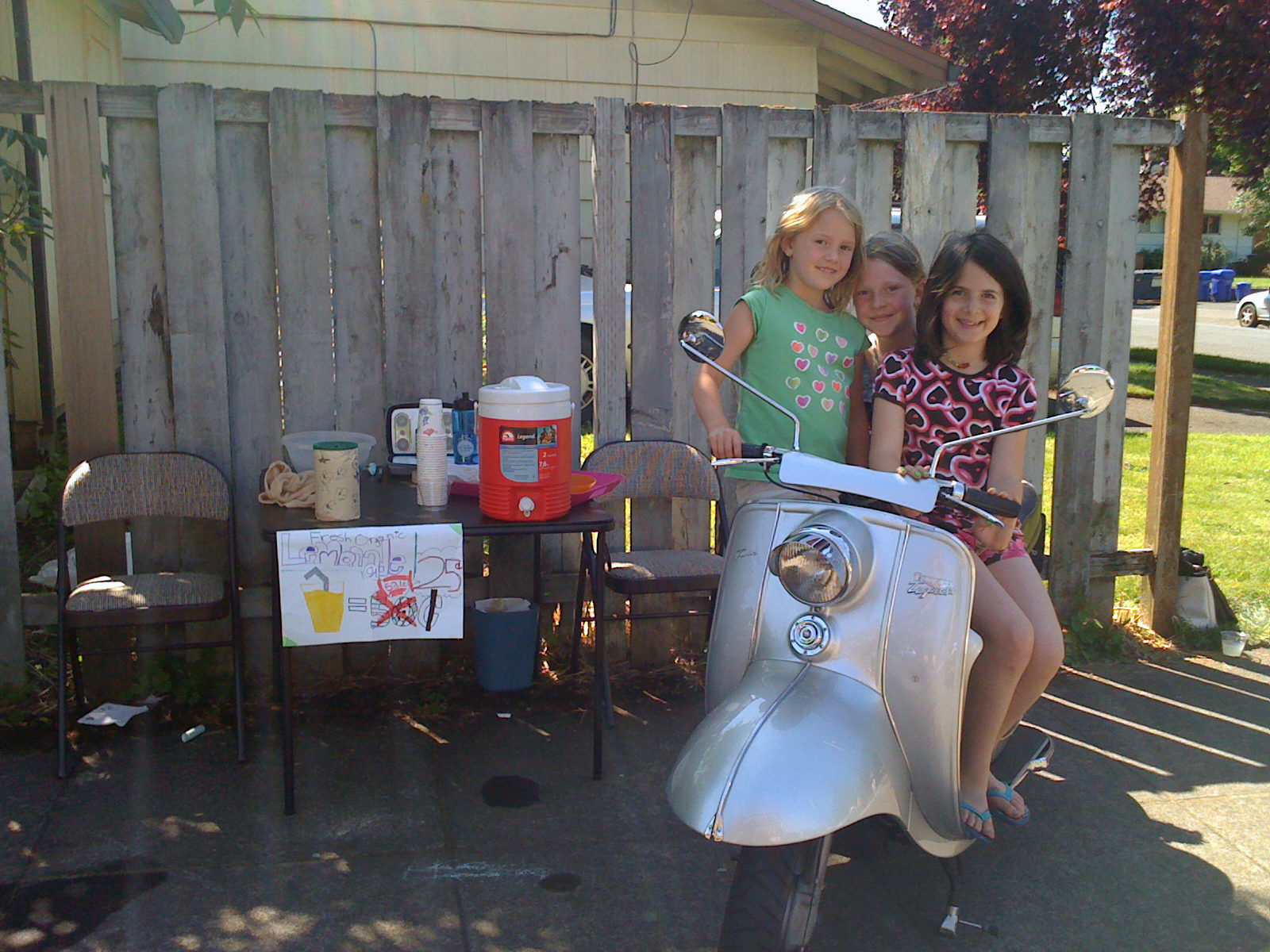 Lemonade Stand Tigress 2